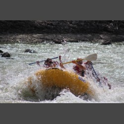 Survival Rafting
